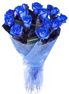 12 adet mavi gül buketi  Ankara Sincan online çiçekçi , çiçek siparişi