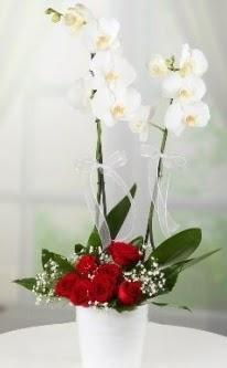 2 dallı beyaz orkide 7 adet kırmızı gül  Ankara Sincan çiçek mağazası , çiçekçi adresleri