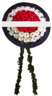 mozele çiçeği  Ankara Sincan güvenli kaliteli hızlı çiçek