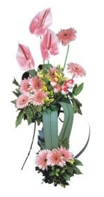 Ankara Sincan çiçek gönderme sitemiz güvenlidir  Pembe Antoryum Harikalar Rüyasi
