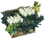 Çiçek siparişi Ankara Sincan anneler günü çiçek yolla  Ahsap sandik beyaz güller