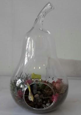 Armut orta boy cam terrarium tanzim  Ankara Sincan çiçekçi mağazası