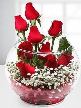 Kırmızı Mutluluk fanusta 9 kırmızı gül  Ankara Sincan online çiçek gönderme sipariş
