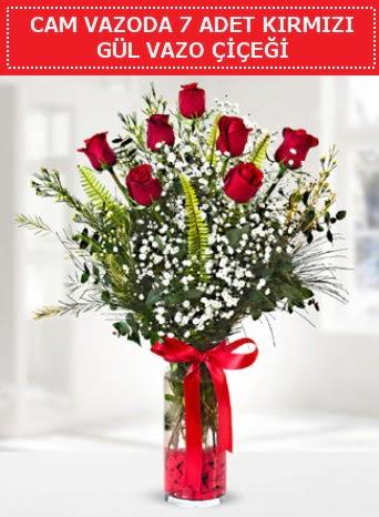 Cam vazoda 7 adet kırmızı gül çiçeği  Ankara Sincan çiçek , çiçekçi , çiçekçilik