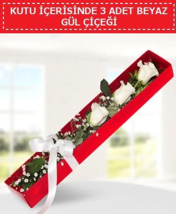 Kutu içerisinde 3 adet beyaz gül çiçeği  Ankara Sincan hediye sevgilime hediye çiçek