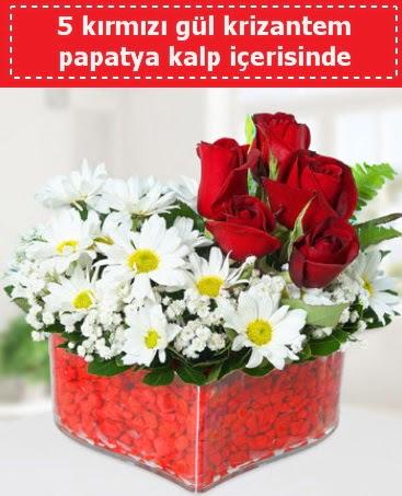 mika kalp içerisinde 5 kırmızı gül papatya  Ankara Sincan hediye çiçek yolla