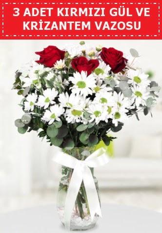 3 kırmızı gül ve camda krizantem çiçekleri  Ankara Sincan hediye çiçek yolla
