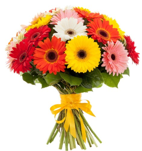 Gerbera demeti buketi  Ankara Sincan çiçek siparişi sitesi