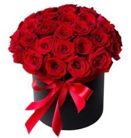25 adet kırmızı gül kız isteme çiçeği  cicek siparisi Ankara Sincan cicek , cicekci