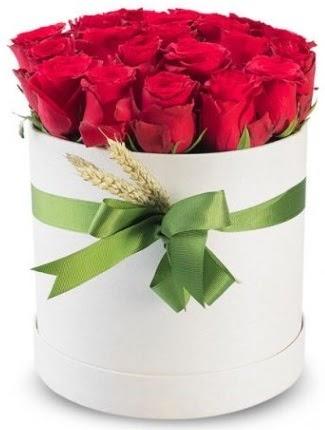 25 adet özel kutuda kırmızı gül  Ankara Sincan çiçek online çiçek siparişi  söz çiçekler