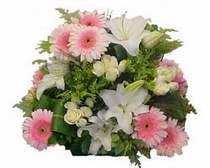 Ankara Sincan İnternetten çiçek siparişi  Gül kazablanka gerbera sepet çiçek modeli