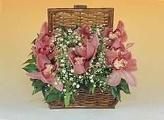Ankara Sincan çiçek online çiçek siparişi  Sepet içerisinde orkide