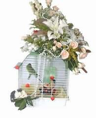 Ankara Sincan çiçek servisi , çiçekçi adresleri  Muhabbet kusu ve çiçekler